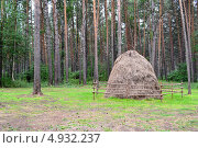 Купить «Стог сена», фото № 4932237, снято 5 августа 2012 г. (c) александр афанасьев / Фотобанк Лори