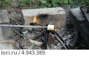 Маршмеллоу обжаривают на костре. Стоковое видео, видеограф Евгений / Фотобанк Лори
