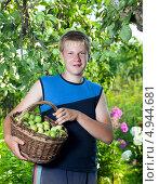 Купить «Подросток с корзиной яблок в саду», фото № 4944681, снято 24 июля 2010 г. (c) Куликов Константин / Фотобанк Лори