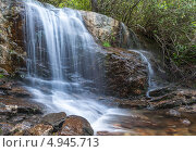 Лесной водопад. Стоковое фото, фотограф Petro Shostak / Фотобанк Лори
