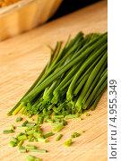 Купить «Частично порезанный зеленый лук на доске», фото № 4955349, снято 17 февраля 2012 г. (c) Wavebreak Media / Фотобанк Лори
