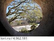 Вид на парк через круглое окно. Стоковое фото, фотограф Elena Ritschard / Фотобанк Лори