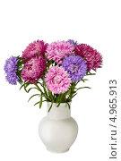 Купить «Букет разноцветных астр в белой вазе», фото № 4965913, снято 17 августа 2013 г. (c) Наталья Волкова / Фотобанк Лори