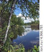 Купить «Берёза на берегу озера», фото № 4966781, снято 5 августа 2013 г. (c) Самойлова Екатерина / Фотобанк Лори