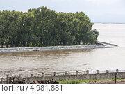 Купить «Хабаровск готовится к наводнению, защитная дамба из мешков с песком на набережной», эксклюзивное фото № 4981881, снято 24 августа 2013 г. (c) Дмитрий Фиронов / Фотобанк Лори
