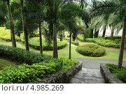 Парк в Тайланде (2011 год). Стоковое фото, фотограф Белоглазова Елена / Фотобанк Лори