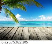 Деревянный пирс и пальма с видом на Карибское море. Стоковое фото, фотограф Iakov Kalinin / Фотобанк Лори