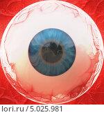 Купить «Глазное яблоко в кровеносных сосудах», иллюстрация № 5025981 (c) Анна Павлова / Фотобанк Лори