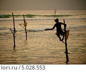Шри-ланкийский рыбак (2013 год). Стоковое фото, фотограф Надежда Зверева / Фотобанк Лори