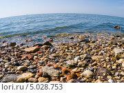 Купить «Берег Азовского моря в черте Таганрога», фото № 5028753, снято 24 августа 2013 г. (c) Борис Панасюк / Фотобанк Лори