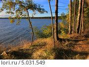 Купить «Полуостров Юминда на Балтийском море», фото № 5031549, снято 24 августа 2013 г. (c) Aleksander Kaasik / Фотобанк Лори