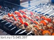 Купить «Аппетитный сочный шашлык жарится на мангале», фото № 5045397, снято 28 февраля 2020 г. (c) FotograFF / Фотобанк Лори