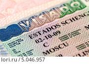 Купить «Шенгенская виза в паспорте, фрагмент», фото № 5046957, снято 22 февраля 2019 г. (c) FotograFF / Фотобанк Лори