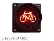 Красный свет для велосипедистов - светофор со знаком велосипеда, фото № 5047665, снято 8 августа 2013 г. (c) Угоренков Александр / Фотобанк Лори