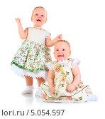 Купить «Две годовалые девочки», фото № 5054597, снято 15 декабря 2017 г. (c) Андрей Армягов / Фотобанк Лори