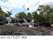 Купить «Горная река Каньо Кристалес. Колумбия», фото № 5071469, снято 7 ноября 2012 г. (c) Free Wind / Фотобанк Лори