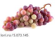 Купить «Гроздь красного винограда, изолированно на белом фоне», фото № 5073145, снято 7 сентября 2013 г. (c) Литвяк Игорь / Фотобанк Лори