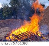 Купить «Большой костер  - горящее дерево», фото № 5100393, снято 29 сентября 2013 г. (c) SevenOne / Фотобанк Лори