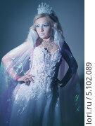 Купить «Снежная королева», фото № 5102089, снято 17 декабря 2011 г. (c) Тавруева Надежда / Фотобанк Лори