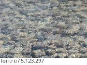 Вода фон. Стоковое фото, фотограф Валерий Волобоев / Фотобанк Лори