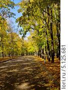 Осенняя аллея в парке. Стоковое фото, фотограф Илюхина Наталья / Фотобанк Лори