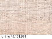 Купить «Текстура деревянной поверхности», фото № 5131981, снято 3 сентября 2013 г. (c) Elnur / Фотобанк Лори