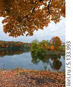 Осень в Гатчине. Стоковое фото, фотограф Алексей Смирнов / Фотобанк Лори