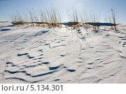 Снежные дюны. Стоковое фото, фотограф Алексей Смирнов / Фотобанк Лори