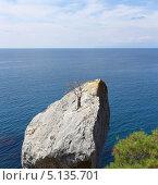 Купить «Пейзаж с высохшим деревцем на скале», фото № 5135701, снято 10 сентября 2013 г. (c) Denis Kh. / Фотобанк Лори