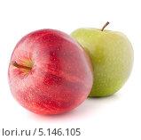 Купить «Красное и зелёное яблоки, изолированно на белом фоне», фото № 5146105, снято 13 марта 2012 г. (c) Natalja Stotika / Фотобанк Лори