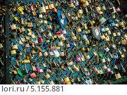 Купить «Замки любви на мосту в Париже», фото № 5155881, снято 8 июля 2013 г. (c) Elnur / Фотобанк Лори