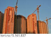 Купить «Строительство домов», эксклюзивное фото № 5161837, снято 14 октября 2013 г. (c) Александр Алексеев / Фотобанк Лори