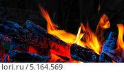Купить «Огонь костра на черном фоне», фото № 5164569, снято 30 августа 2013 г. (c) Татьяна Козырева / Фотобанк Лори