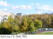 Наукоград Кольцово. Осень. (2013 год). Стоковое фото, фотограф Наталья Зинченко / Фотобанк Лори