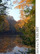 Осенний парк. Озеро. Листья на воде. Стоковое фото, фотограф Svet / Фотобанк Лори