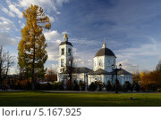 Храм в Царицыно. Стоковое фото, фотограф Дмитрий Востриков / Фотобанк Лори