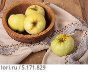 Купить «Яблоки сорта Антоновка на столе», фото № 5171829, снято 26 августа 2013 г. (c) Наталья Двухимённая / Фотобанк Лори