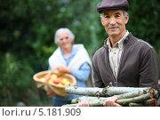 Купить «Пожилой мужчина с дровами и его жена с корзиной яблок в саду», фото № 5181909, снято 11 октября 2010 г. (c) Phovoir Images / Фотобанк Лори