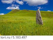 Купить «Стоящий камень. Археологические памятники Хакасии», фото № 5183497, снято 24 июля 2010 г. (c) Юрий Пономарёв / Фотобанк Лори