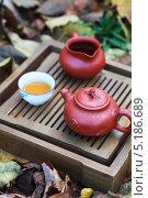 Аксессуары для традиционной китайской чайной церемонии Пинь Ча. Стоковое фото, фотограф Попкова Ольга / Фотобанк Лори