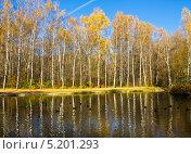 Купить «Москва, парк Сокольники, Путяевские пруды», фото № 5201293, снято 14 октября 2013 г. (c) ИВА Афонская / Фотобанк Лори