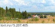 Сельский пейзаж. Стоковое фото, фотограф Владимир Аликин / Фотобанк Лори