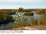 Купить «Сосна на скале на фоне осеннего пейзажа», фото № 5210845, снято 5 октября 2013 г. (c) Юлия Бабкина / Фотобанк Лори