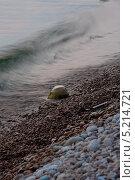Прилив и камень. Стоковое фото, фотограф Vladimir 'Seagull' Maksimov / Фотобанк Лори
