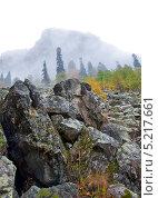 Купить «Разноцветный лес на горном склоне», фото № 5217661, снято 30 сентября 2013 г. (c) Кузякин Иван / Фотобанк Лори