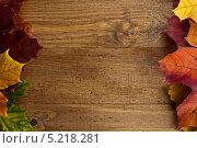 Рамка из осенних листьев клёна на фактурном деревянном столе. Стоковое фото, фотограф Alioshin.aleksey / Фотобанк Лори
