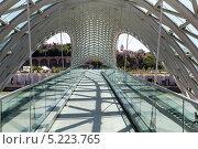 Купить «Мост Мира - пешеходный мост на реке Мтквари в Тбилиси, Грузия», фото № 5223765, снято 3 июля 2013 г. (c) Евгений Ткачёв / Фотобанк Лори