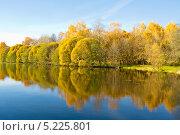 Купить «Москва Измайловский парк, Декоративный пруд», фото № 5225801, снято 12 октября 2013 г. (c) ИВА Афонская / Фотобанк Лори