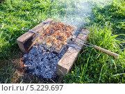 Купить «Мясо жарится на решетке», фото № 5229697, снято 20 марта 2019 г. (c) FotograFF / Фотобанк Лори