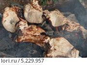 Купить «Мясо жарится на углях», эксклюзивное фото № 5229957, снято 28 сентября 2013 г. (c) Dmitry29 / Фотобанк Лори